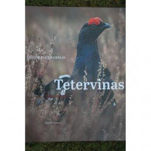 "Eugenijus Drobelis ""Tetervinas"""