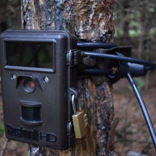 Gamtos kameros Browning spyna Masterlock 8mm Python